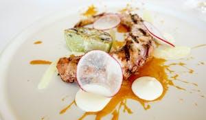 Chargrilled Octopus Hand - capsicum puree, garlic aioli, lemon segments
